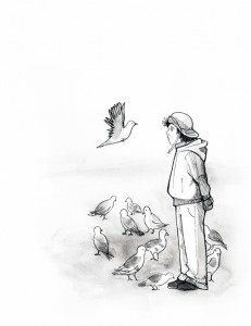 A Little Boy and Pigeons